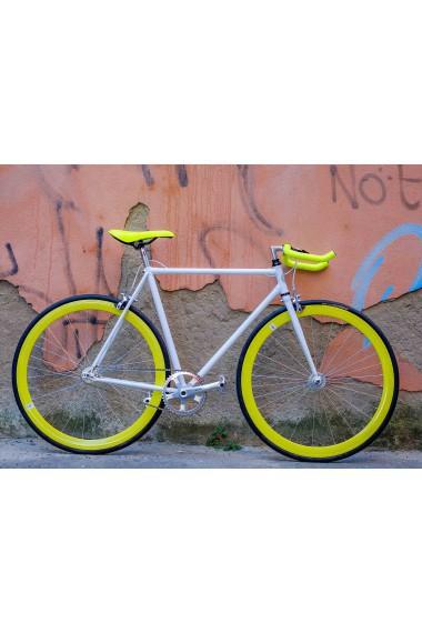 White&Yellow - DafneEasy