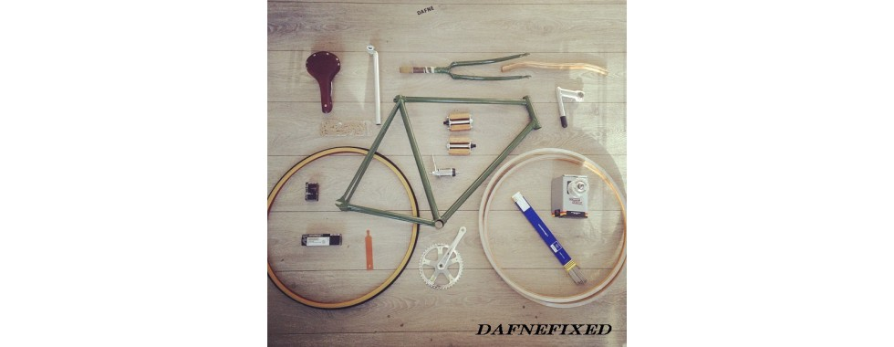 Single Speed / Fixed